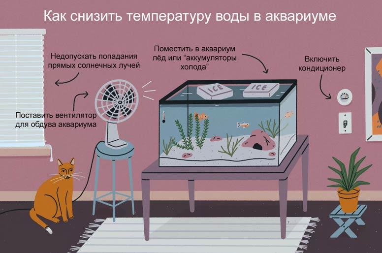cooling-aquarium.jpg